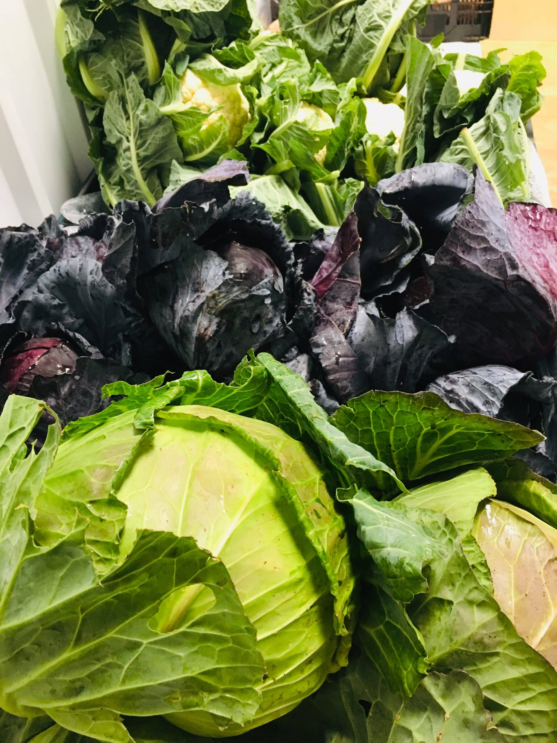 Set price fruit and veg box contents – 11 March 2021